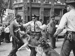 Image result for american south bull connor